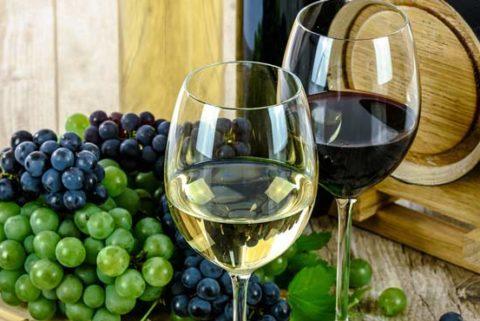 vinske ture bez agencije